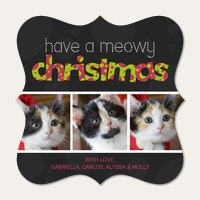 Meowy Christmas Everyone