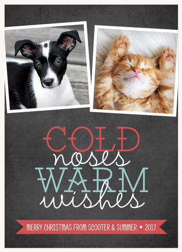 Cold Noses, Warm Wishes