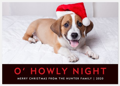 Howly Night Holiday Photo Cards