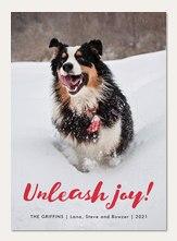 Unleash Joy