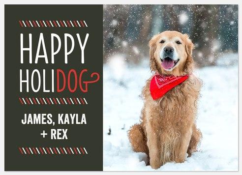 Dashing Holidog Holiday Photo Cards