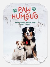 Paw Humbug -  Dog Christmas Cards