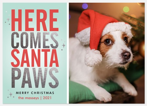 Here Comes Santa Paws Holiday Photo Cards