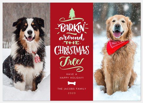 Barkin' Christmas Holiday Photo Cards