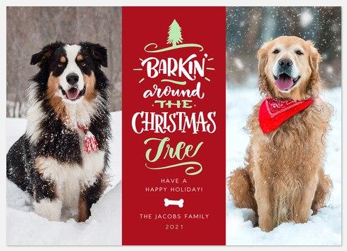 Barkin' Christmas Holiday Photo Cards