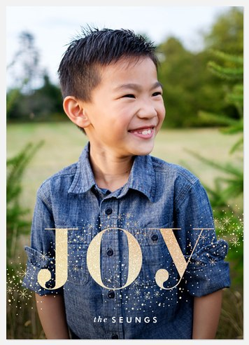 Twinkle Joy Holiday Photo Cards