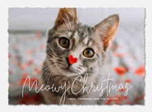Pet Christmas Cards | PhotoAffections
