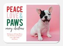 Dog Christmas Cards.Pet Christmas Cards Photoaffections