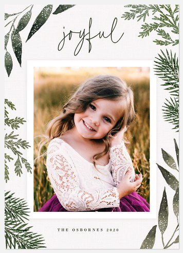 Snowdusted Holiday Photo Cards